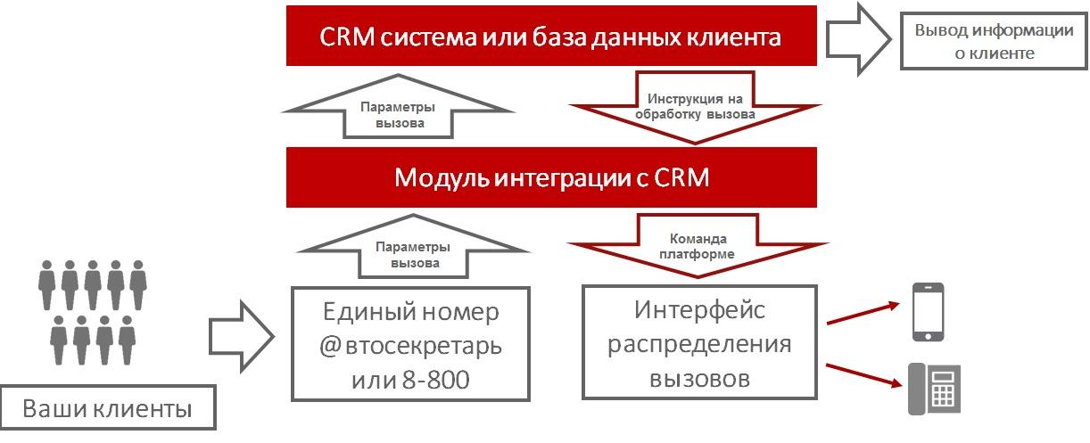 CRM система или база данных клиента